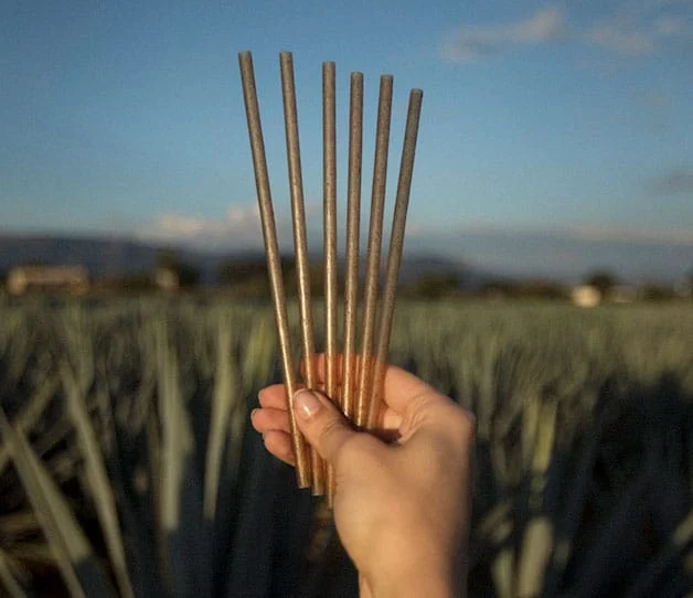 Agave Straws from Jose Cuervo