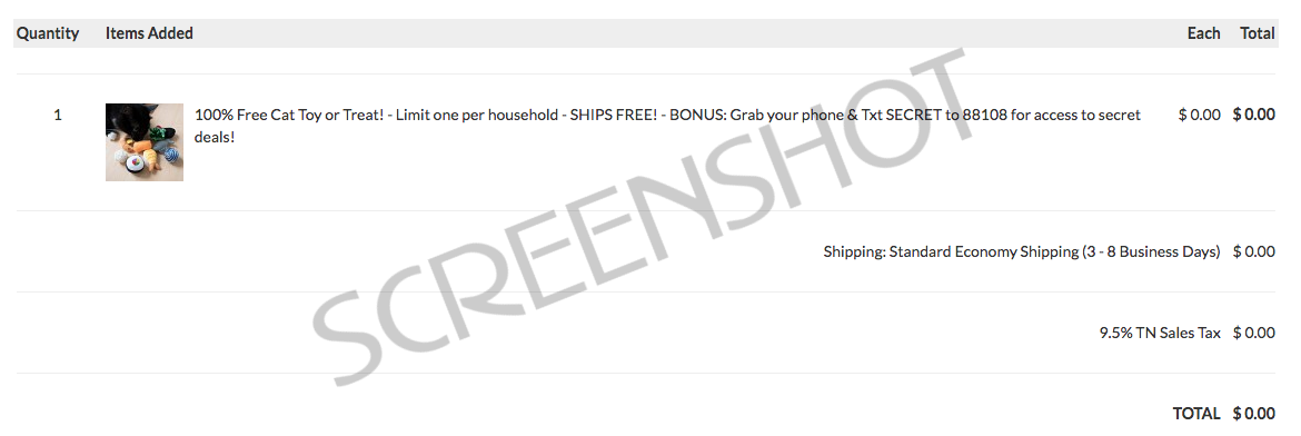 Screenshot of FREE Offer Order Summary