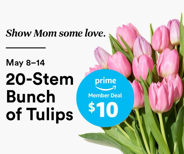 $10 for a 20-Stem Bunch of Tulips