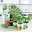 FREE Back to the Roots Gardening Kits