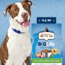 FREE Big Life Dog Chat Pack (Apply)