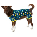 Chewy Dog Clothing & Accessories Sale