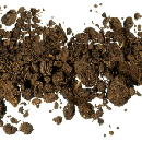 Free Citizen Science Soil Collection Kit