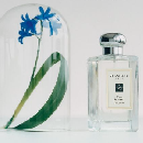 Free Wild Bluebell Cologne Sample