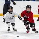 Try Hockey For Free Day on 2/22