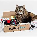 Get your first KitNipBox Box for $9.99