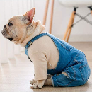 Jean Overalls for Dogs $8.50