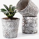FREE Plant Pots After Rebate
