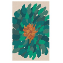 Area Rugs Up To 95% Off