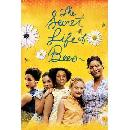 FREE 'The Secret Life of Bees' HD Rental