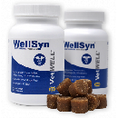 2 FREE WellSyn Joint Supplement Samples