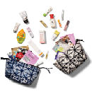 Limited Edition Beauty Bags for $20