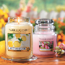 Buy 1 Candle, Get 1 Free